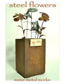 steelflowers 72